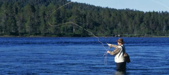 Подбираем рыболовные крючки